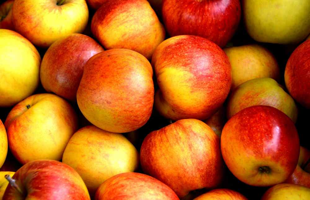 apple-fruit-fruits-delicious-162806.jpeg